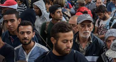 Uchodźcy w Podkowie Leśnej - ciąg dalszy