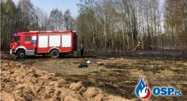 Płonął las w gminie Glinojeck [zdjęcia]