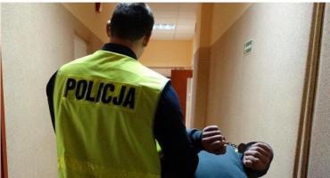 Złodziejskie trio w rękach policjantów z Ciechanowa