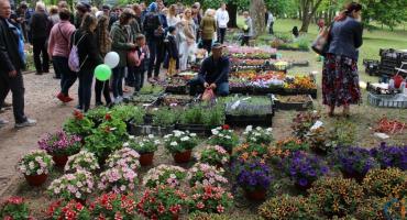 Kwiaty Ogrodów przyciągnęły tłumy do Gołotczyzny [zdjęcia]