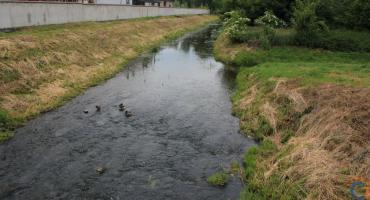 Kajaki na Łydyni - ruszyła realizacja projektu. Kiedy pierwszy spływ?