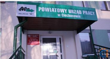 Wolne stanowisko urzędnicze w Powiatowym Urzędzie Pracy w Ciechanowie
