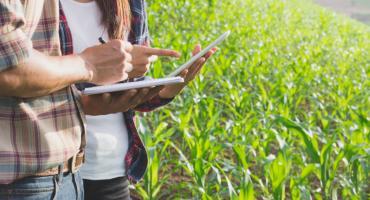 Dlaczego warto zdecydować się na zakupy w internetowym sklepie rolniczym?