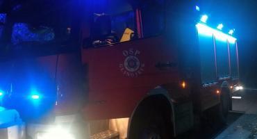 Drzewo zablokowało drogę krajową w powiecie ciechanowskim