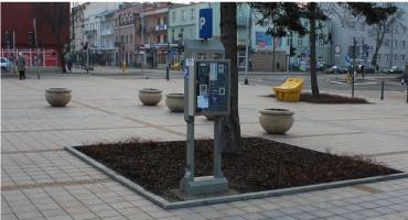 Bezpłatne parkingi dla części mieszkańców Ciechanowa. Jaki warunek trzeba spełnić?