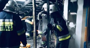 Duże straty po pożarze domu jednorodzinnego pod Ciechanowem [zdjęcia]