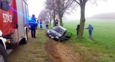 Z ostatniej chwili: Wypadek na drodze Ciechanów-Mława [zdjęcia]