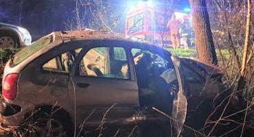 Citroen uderzył w drzewo. Kierowca był pijany i nie miał prawa jazdy [zdjęcia]