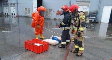 Specjalistyczna grupa ratowników z ciechanowskiej PSP w akcji [zdjęcia]