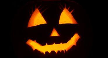 Magiczny halloween z Młynem Wiedzy