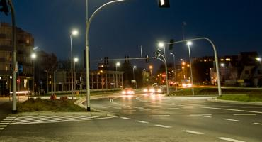 Stado dzików na Trasie Średnicowej w Toruniu [WIDEO]