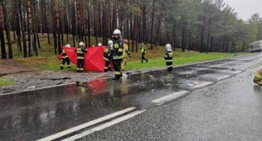Śmiertelny wypadek na trasie Toruń - Bydgoszcz. Apel policji [FOTO]
