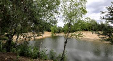 W Toruniu powstaje prawdziwa zielona oaza za 8,5 mln zł [FOTO]