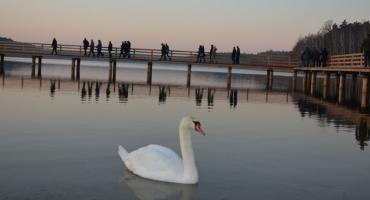 Za nami remont nad ulubionym jeziorem mieszkańców Torunia [FOTO]