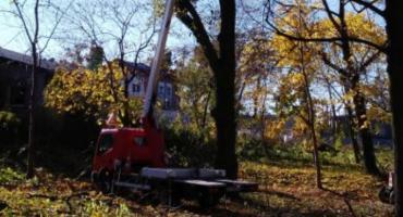 Rewitalizacja parku w Zbójnie