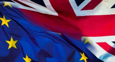 Brexit – choroba  ze znanymi objawami